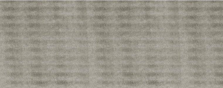 LL Leguan Silver náhled celé desky